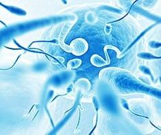 Künstliche Befruchtung - Sexualität und Partnerschaft